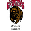 Shop Montana Grizzlies