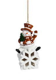 Texas Longhorns Color-Changing LED Ornament
