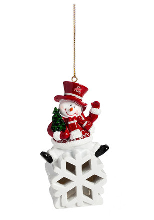 Ohio State Buckeyes Color-Changing LED Ornament