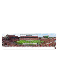 South Carolina Gamecocks Football Panorama Unframed Poster
