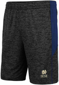 Notre Dame Fighting Irish Colosseum Jordan Shorts - Charcoal