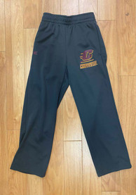 Central Michigan Chippewas Youth Grey Wrangler Track Pants