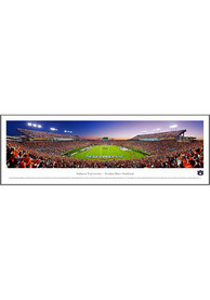 Auburn Tigers End Zone Panorama Framed Posters