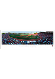 South Carolina Gamecocks Baseball Panorama Unframed Poster