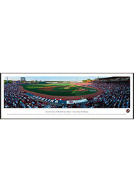 South Carolina Gamecocks Baseball Panorama Framed Posters