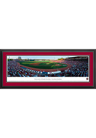 South Carolina Gamecocks Baseball Panorama Deluxe Framed Posters