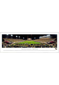 Wake Forest Demon Deacons End Zone Panorama Unframed Poster