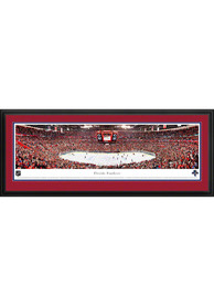 Florida Panthers Panorama Deluxe Framed Posters