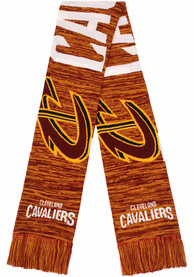 Cleveland Cavaliers Big Logo Colorblend Scarf