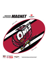Temple Owls Team Color Magnet