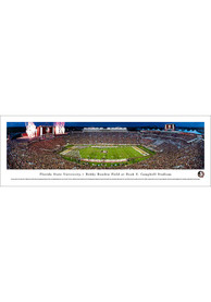 Florida State Seminoles 50 Yard Line Unframed Poster