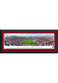 South Carolina Gamecocks End Zone Deluxe Framed Posters