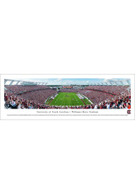 South Carolina Gamecocks End Zone Unframed Unframed Poster
