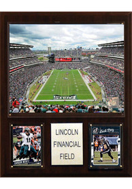 Philadelphia Eagles 12x15 Stadium Photo Plaque