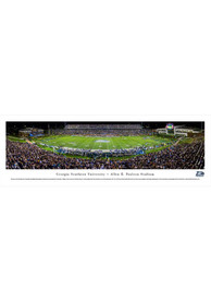 Georgia Southern Eagles Football Panorama Unframed Poster