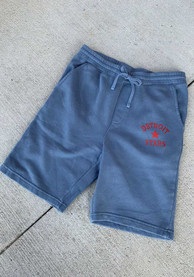 Detroit Stars Rally Number 1 Graphic Shorts - Navy Blue