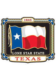 Texas Colored Flag Magnet