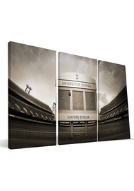 Georgia Bulldogs Stadium 24x48 Canvas Print Wall Art