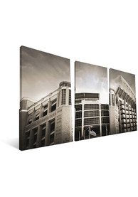 Texas Longhorns Stadium 24x48 Canvas Print Wall Art