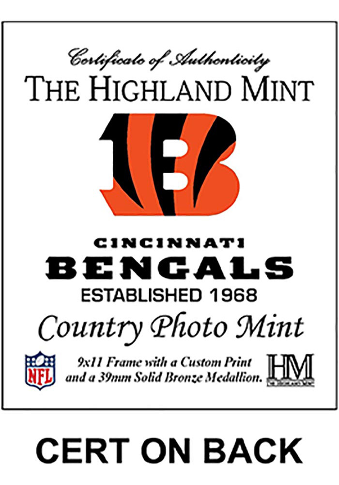 Cincinnati Bengals Country Bronze Coin 9x11 Picture Frame - Image 2