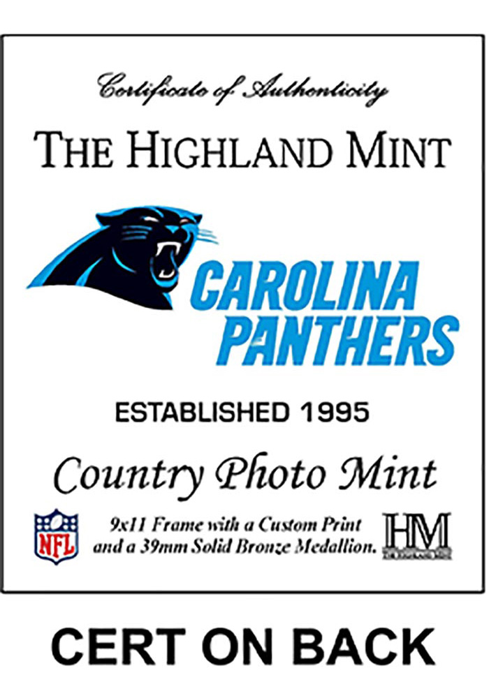 Carolina Panthers Country Bronze Coin 9x11 Picture Frame - Image 2