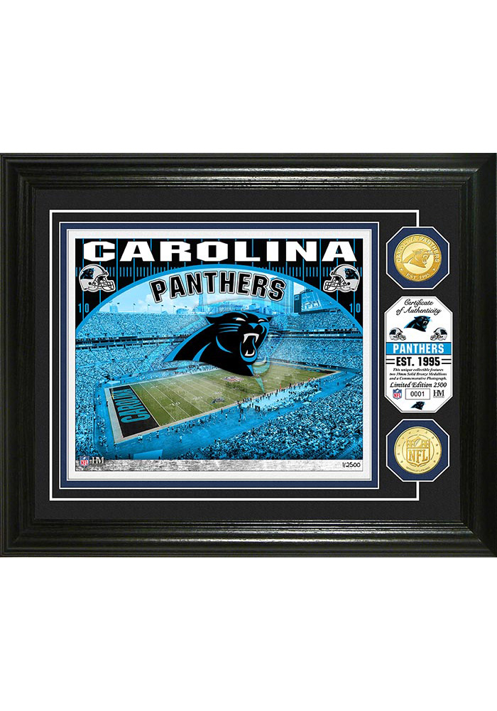 Carolina Panthers Stadium Bronze Coin 13x16 Picture Frame - Image 1