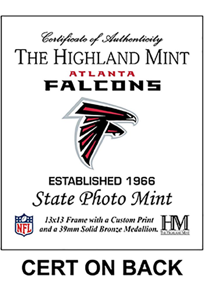 Atlanta Falcons State Bronze Coin 13x13 Picture Frame - Image 2