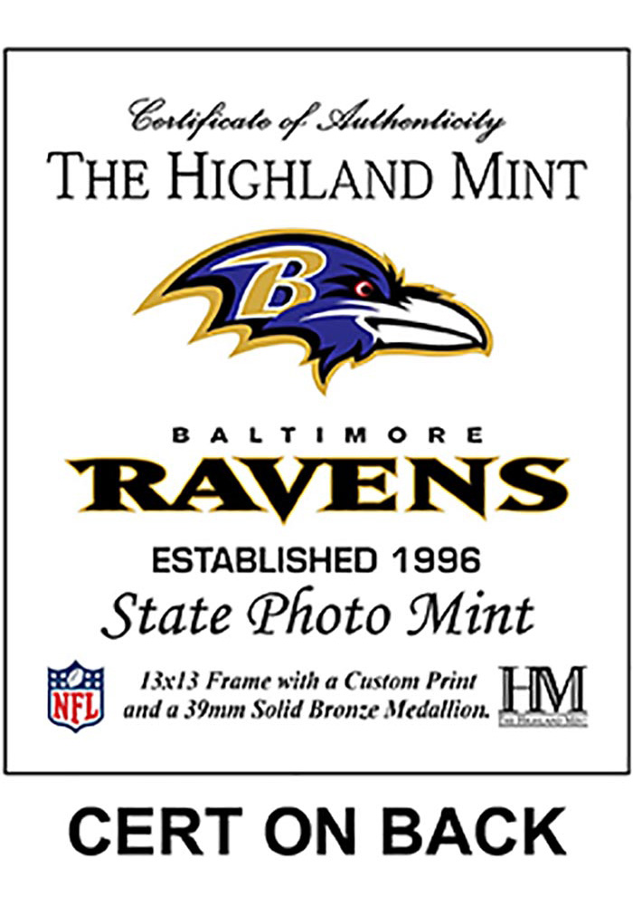 Baltimore Ravens State Bronze Coin 13x13 Picture Frame - Image 2