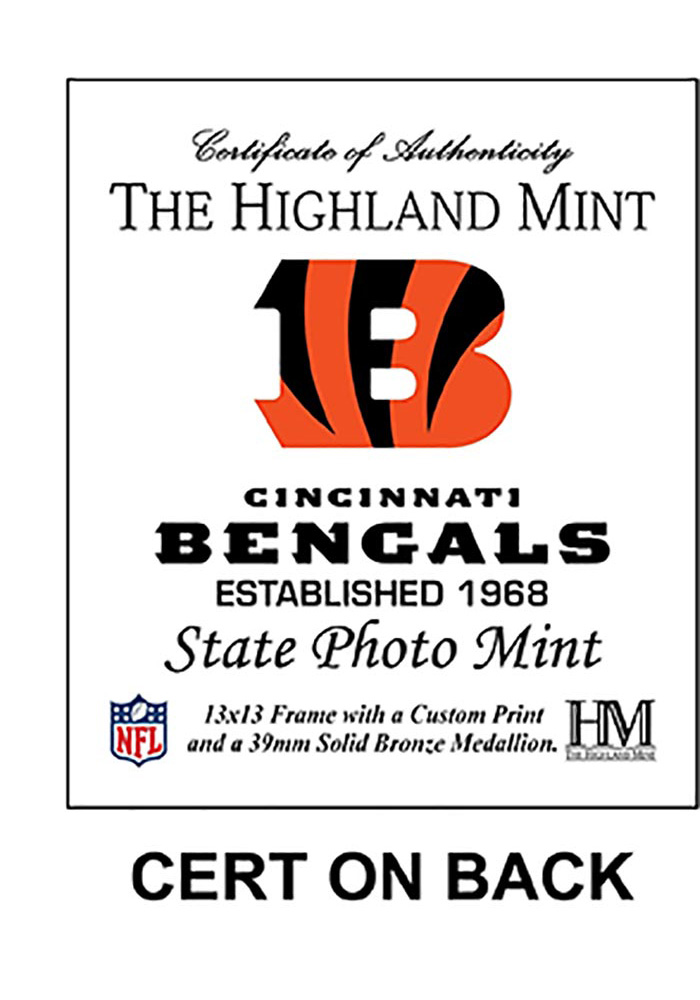Cincinnati Bengals State Bronze Coin 13x13 Picture Frame - Image 2