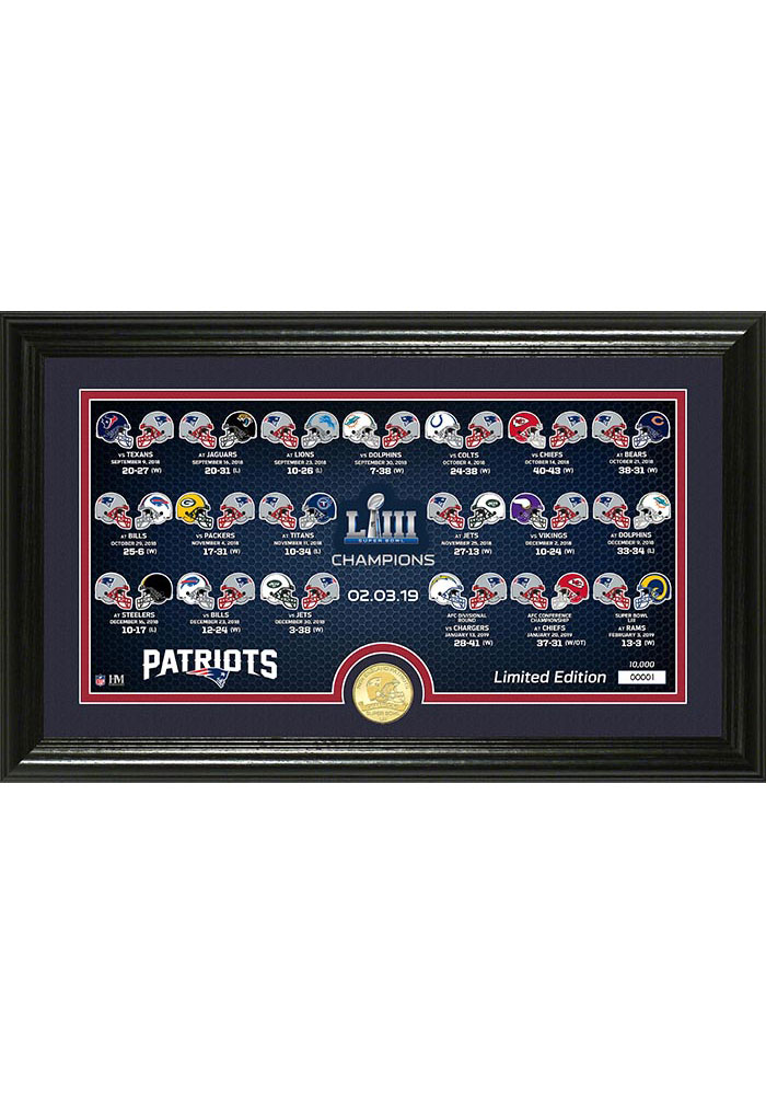 New England Patriots Super Bowl LIII Bronze Coin Panoramic Photo 12x20 Picture Frame - Image 1
