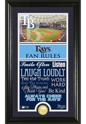 Tampa Bay Rays 12x20 Fan Rules Plaque