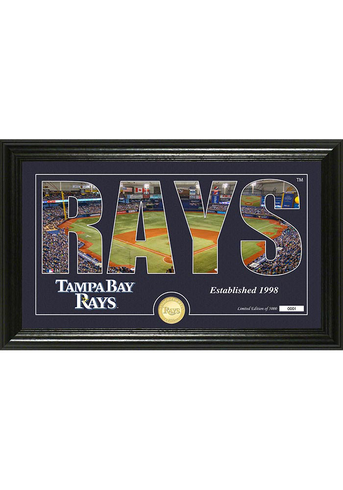 Tampa Bay Rays 12x20 Silhouette Plaque - Image 1
