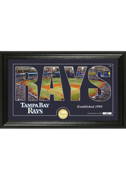 Tampa Bay Rays 12x20 Silhouette Plaque