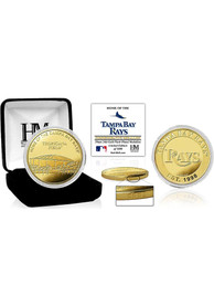 Tampa Bay Rays Stadium Gold Collectible Coin