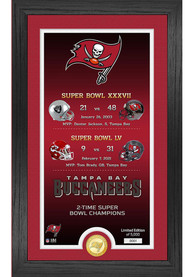 Tampa Bay Buccaneers Super Bowl LV Champions Legacy Bronze Coin Photo Mint Plaque