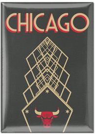Chicago Bulls City Edition 2.5x3.5 Magnet
