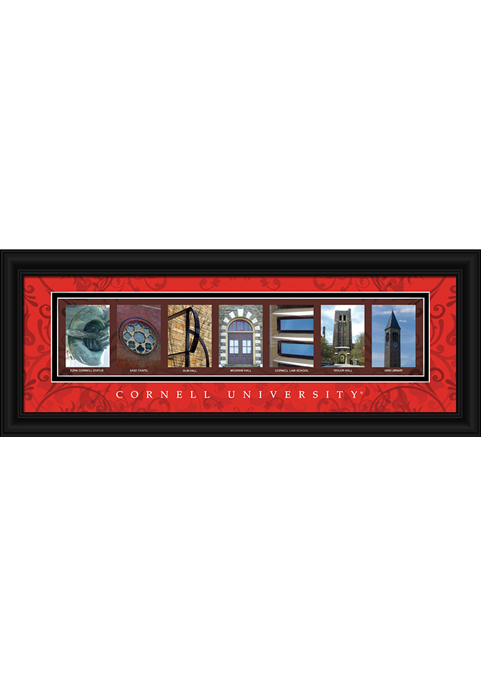 Cornell Big Red 8x20 Framed Posters - Image 1