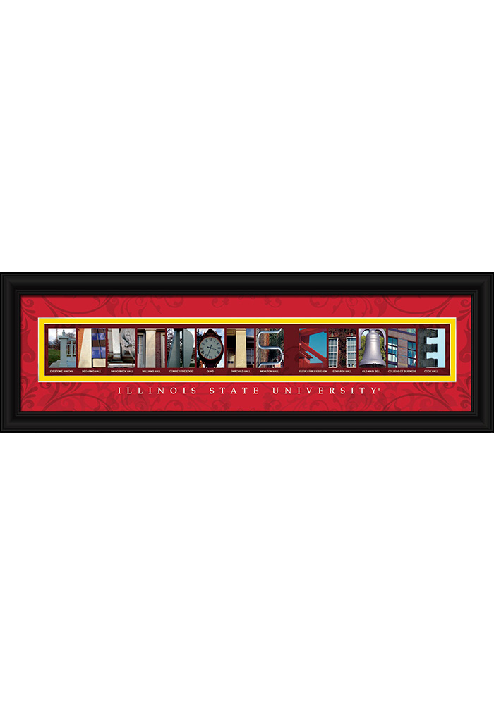 Illinois State 8x24 Framed Posters - Image 1
