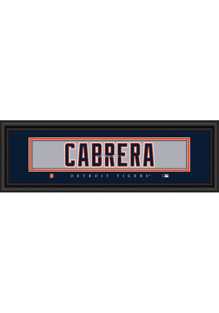 Detroit Tigers 8x24 Framed Posters - Image 1