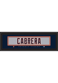Detroit Tigers 8x24 Framed Posters