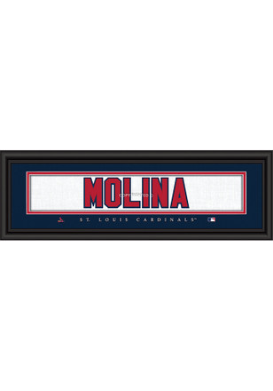 St Louis Cardinals 8x24 Framed Posters
