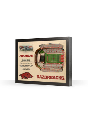 Arkansas Razorbacks 3D Stadium View Wall Art