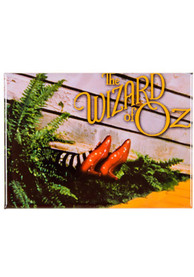 Wizard of Oz Ruby Slippers on Witch Magnet
