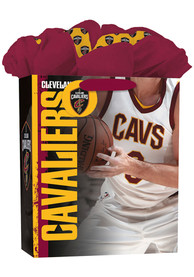 Cleveland Cavaliers Large Maroon Gift Bag