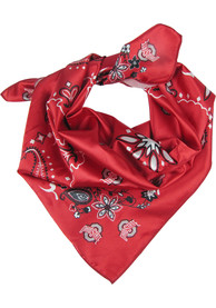 Ohio State Buckeyes Womens Rally Scarf - Red
