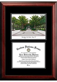 South Florida Bulls Diplomate and Campus Lithograph Picture Frame