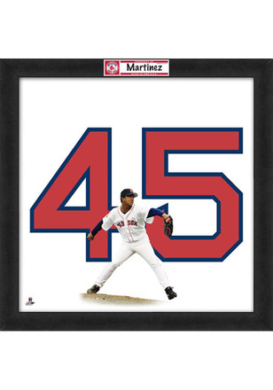 Boston Red Sox 20x20 Uniframe Framed Posters