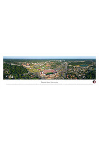 Florida State Seminoles Aerial Panorama Unframed Poster