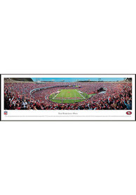 San Francisco 49ers End Zone Panorama Framed Posters