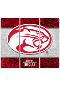 Houston Cougars 3 Piece Border Canvas Wall Art